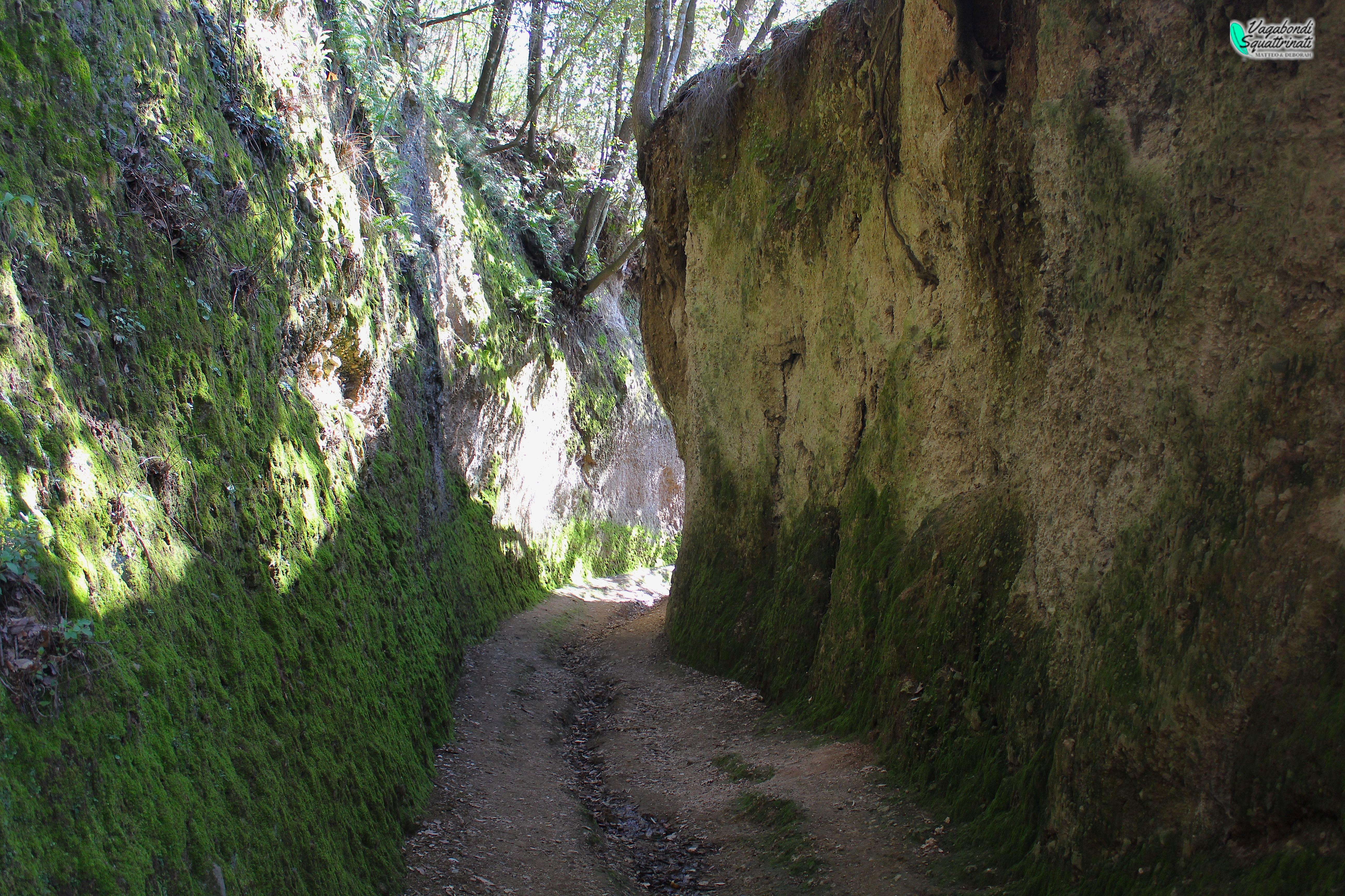 A spasso nei canyon toscani: le Vie Cave