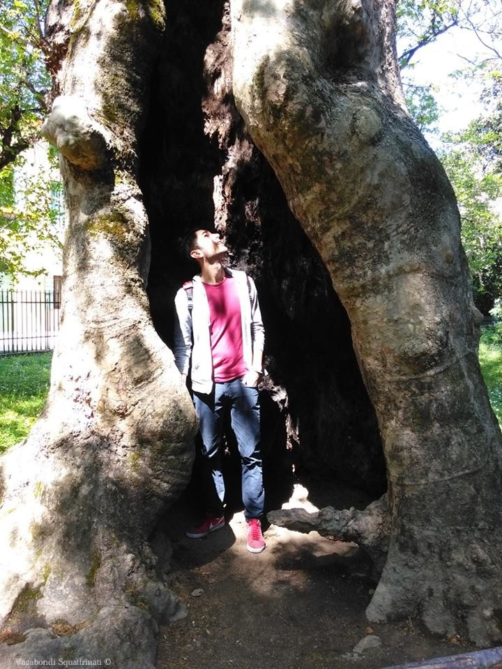 Matteo orto botanico Padova