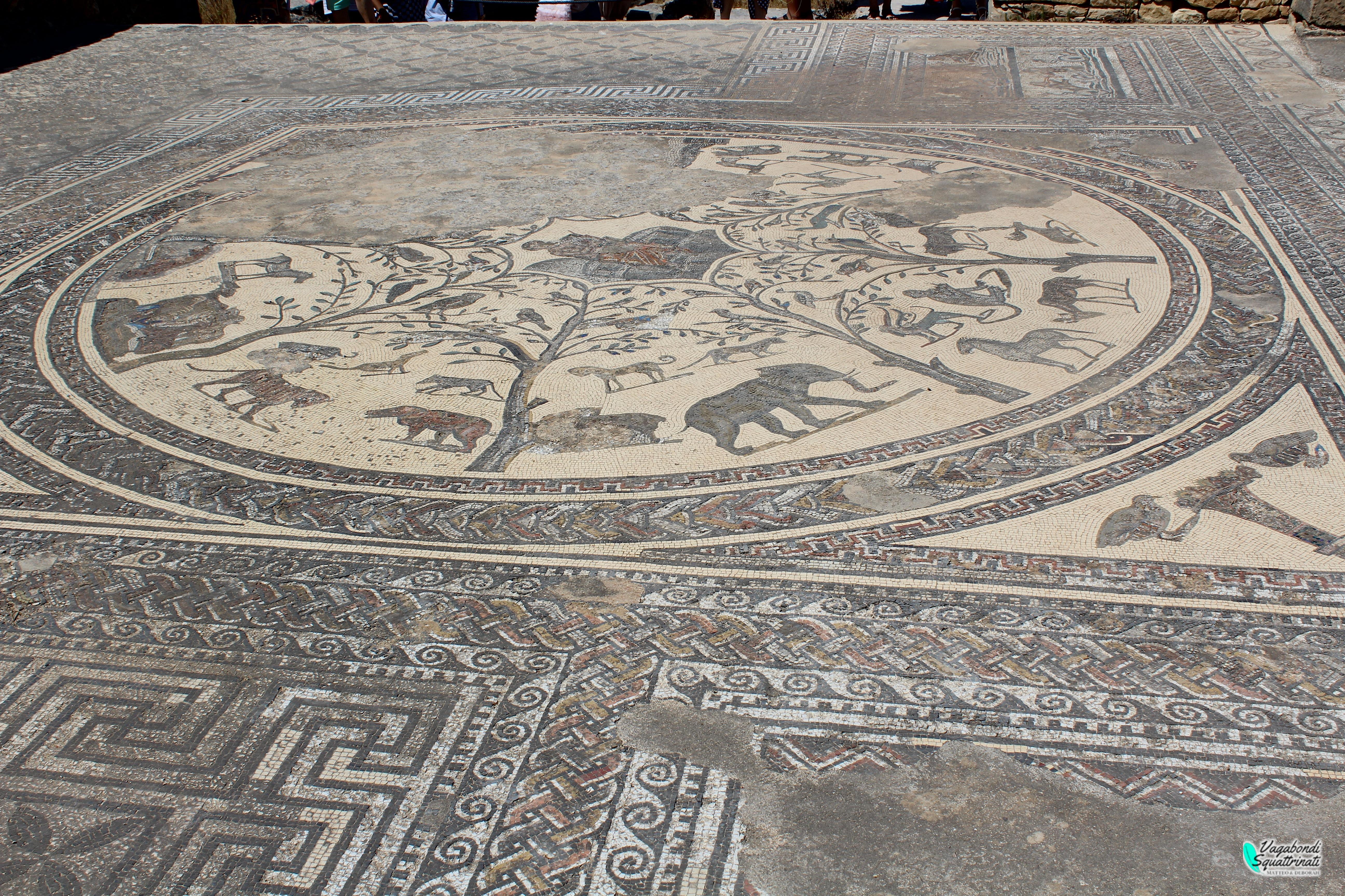 mosaici volubilis