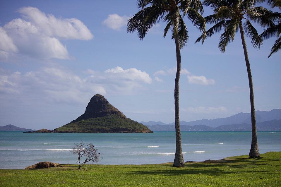 Concorso per vincere voli per le Hawaii