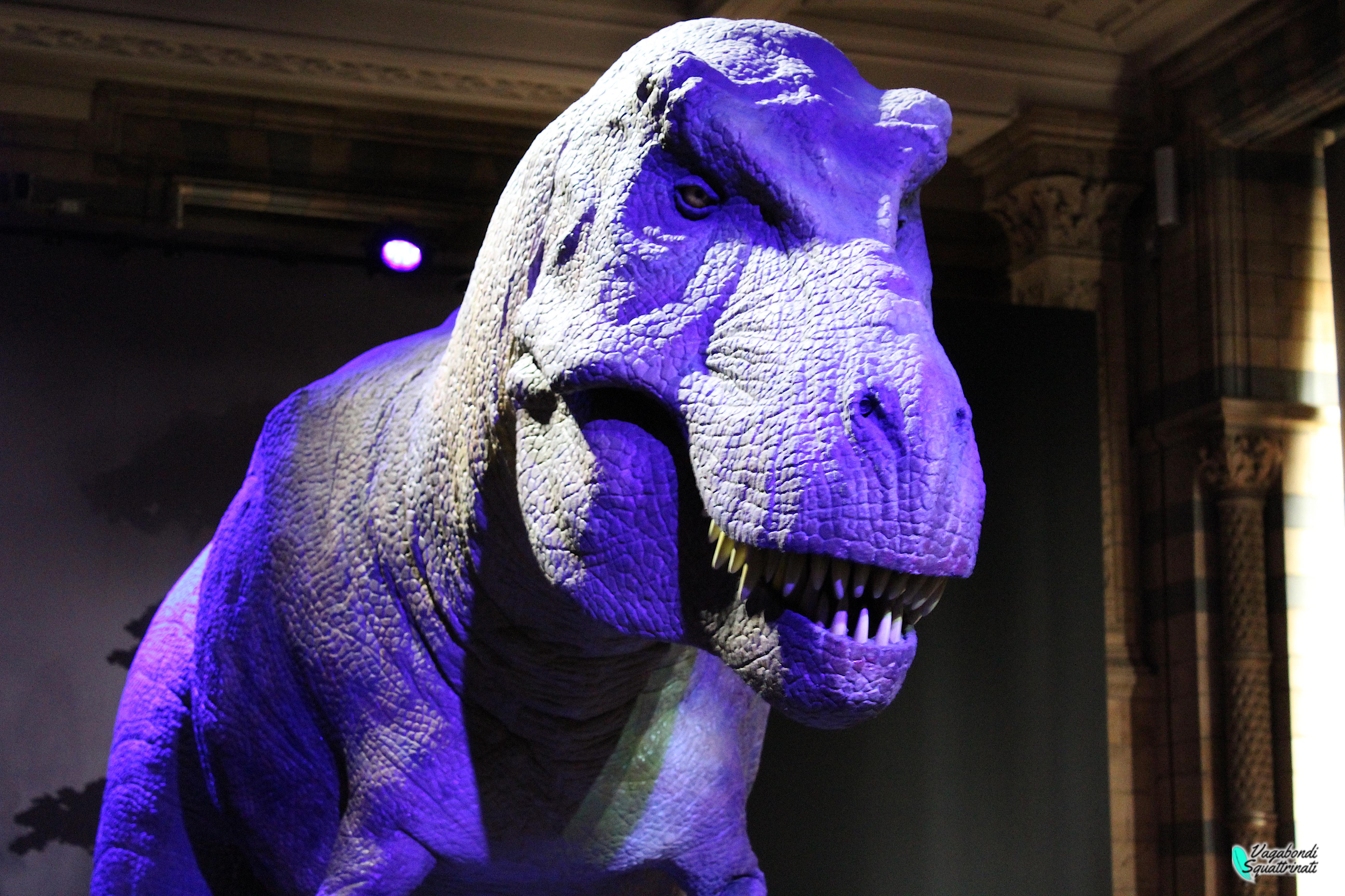 12 cose da fare gratis a Londra musei