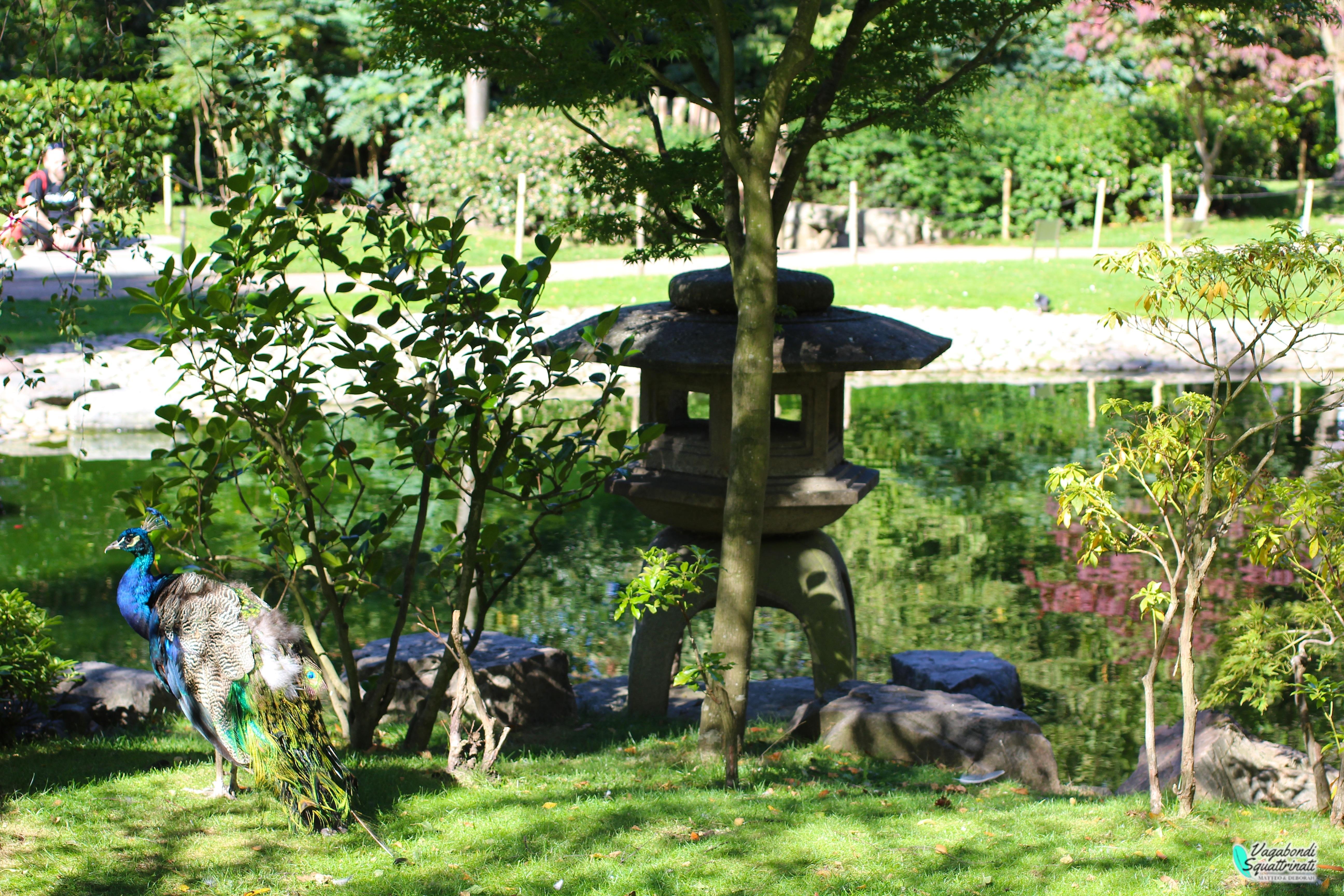 12 cose da fare gratis a Londra Kyoto garden