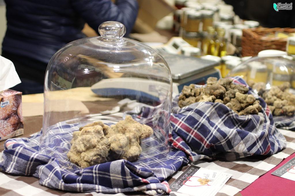 Festa del tartufo di San Miniato: informazioni utili