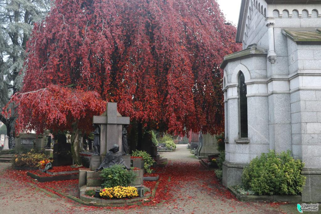cimitero  autunno