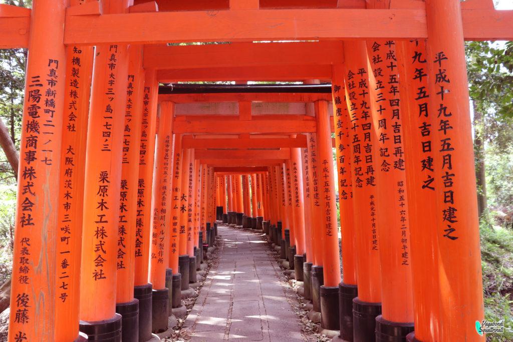 Santuario di Fushimi Inari: un tunnel di torii rossi