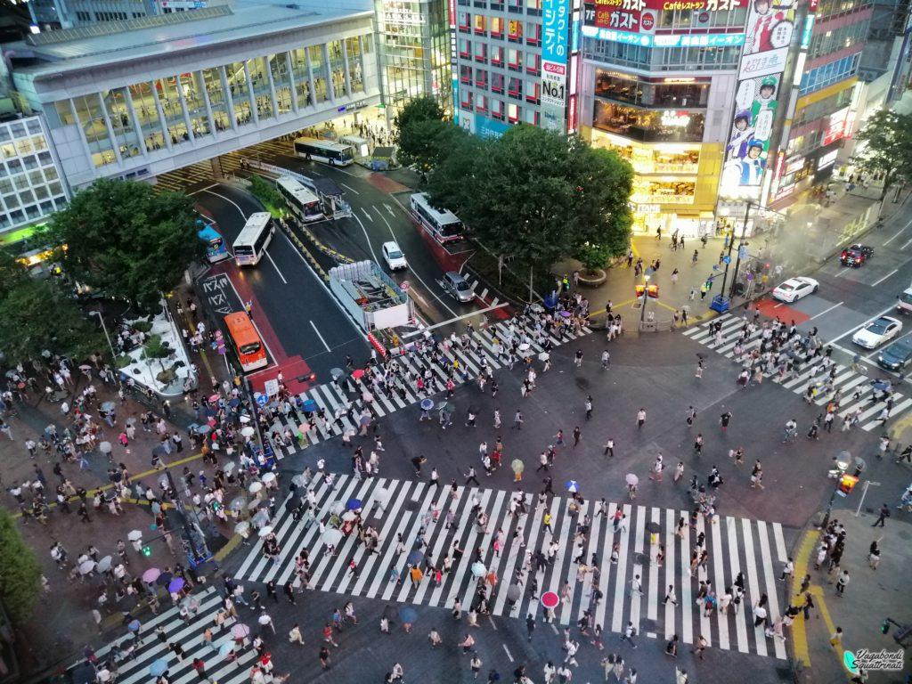 quartieri da visitare a tokyo Shibuya incrocio