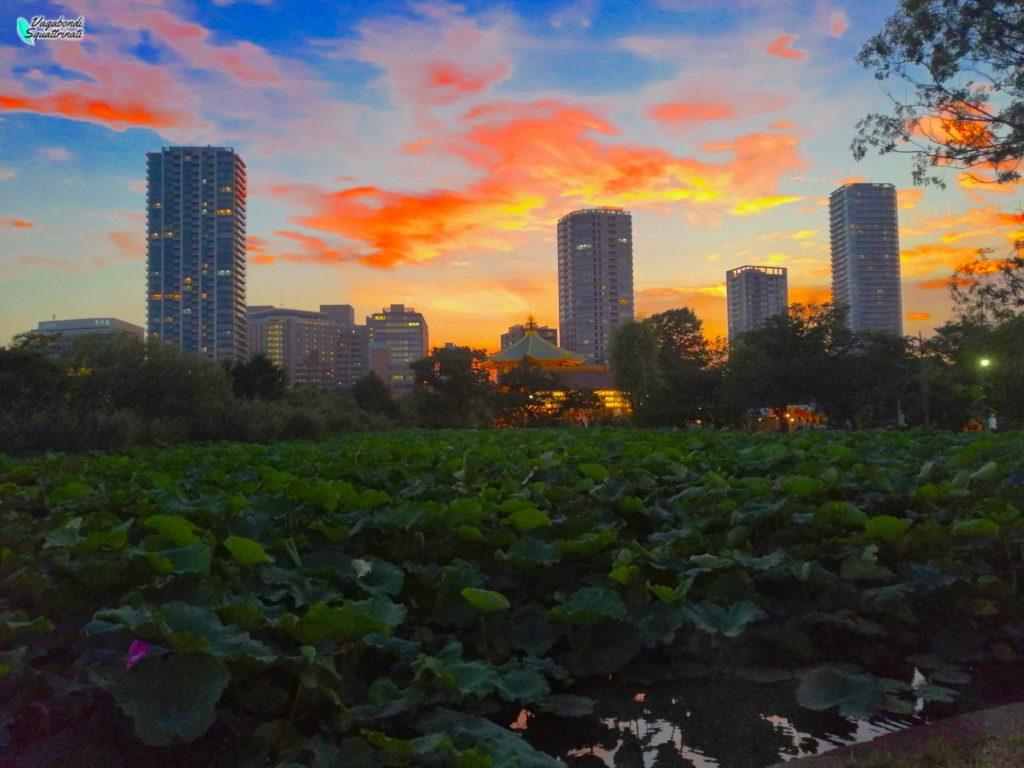 quartieri da vedere a tokyo parco di uno