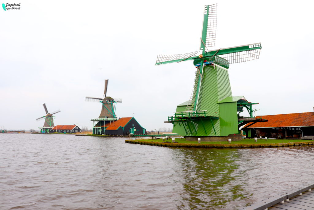 viaggio ad amsterdam zanse schaans