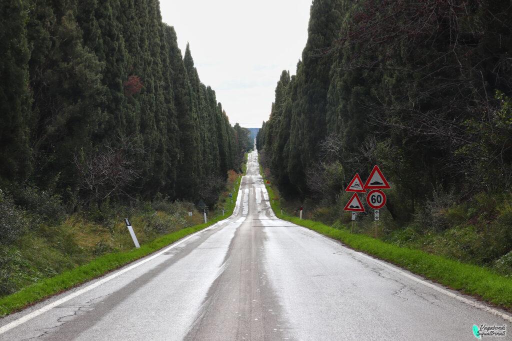 viale dei cipressi borgo di bolgheri
