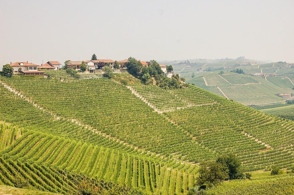 Voucher Piemonte 3X1: come ottenerlo